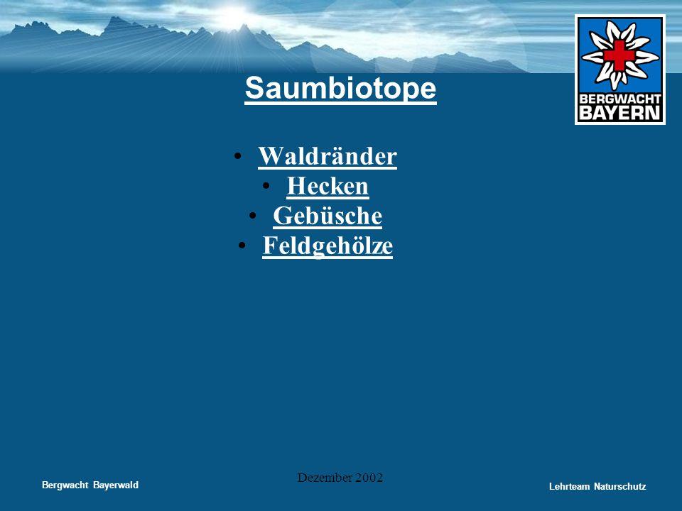 Bergwacht Bayerwald Lehrteam Naturschutz Dezember 2002 Saumbiotope •Waldränder •Hecken •Gebüsche •Feldgehölze