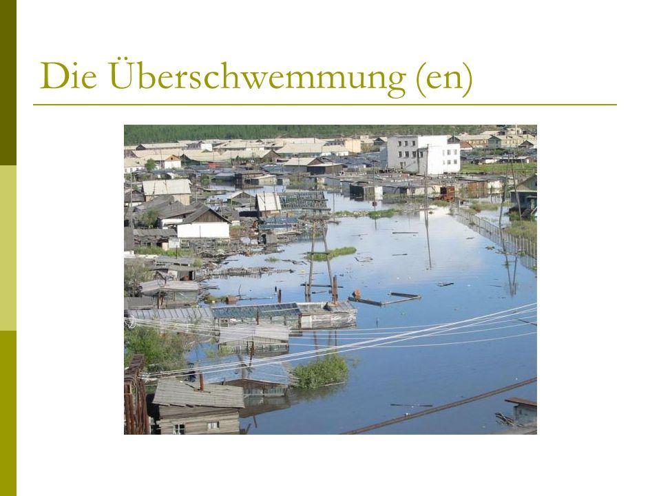 Die Überschwemmung (en)