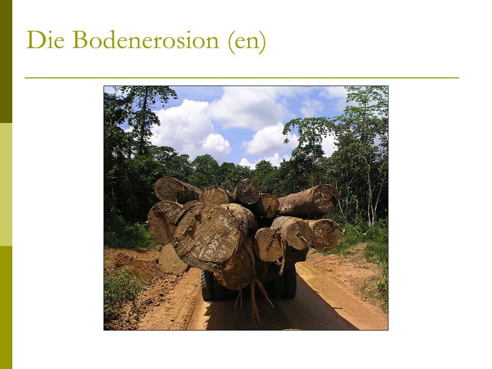 Die Bodenerosion (en)