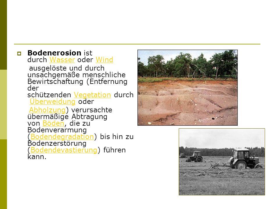  Bodenerosion ist durch Wasser oder Wind WasserWind ausgelöste und durch unsachgemäße menschliche Bewirtschaftung (Entfernung der schützenden Vegetation durch Überweidung oder VegetationÜberweidung Abholzung) verursachte übermäßige Abtragung von Böden, die zu Bodenverarmung (Bodendegradation) bis hin zu Bodenzerstörung (Bodendevastierung) führen kann.AbholzungBödenBodendegradationBodendevastierung