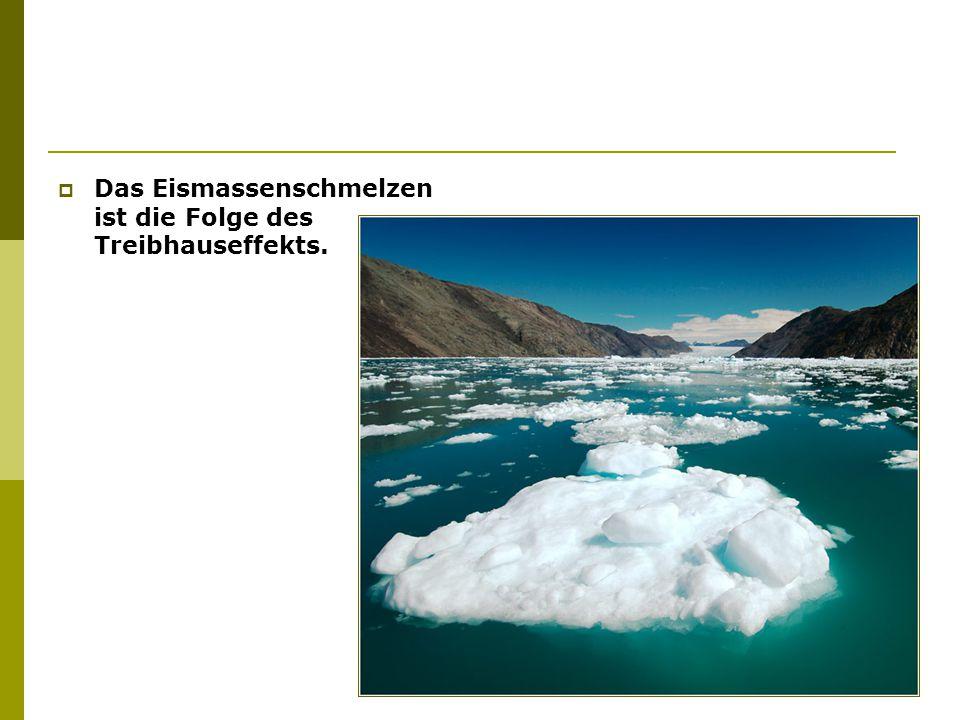  Das Eismassenschmelzen ist die Folge des Treibhauseffekts.