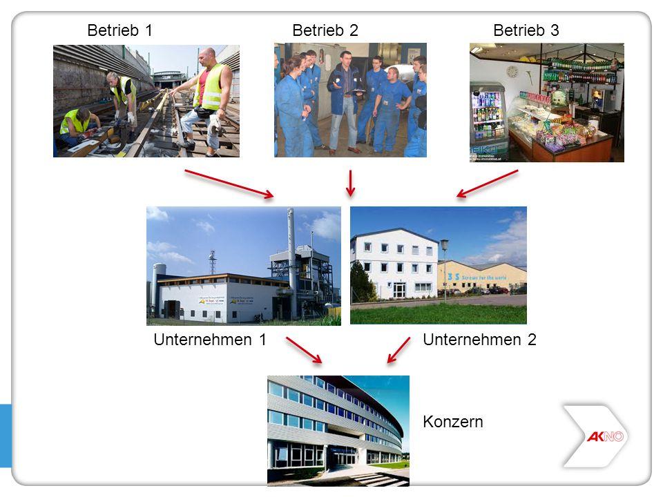 Betrieb 1Betrieb 2Betrieb 3 Unternehmen 1Unternehmen 2 Konzern