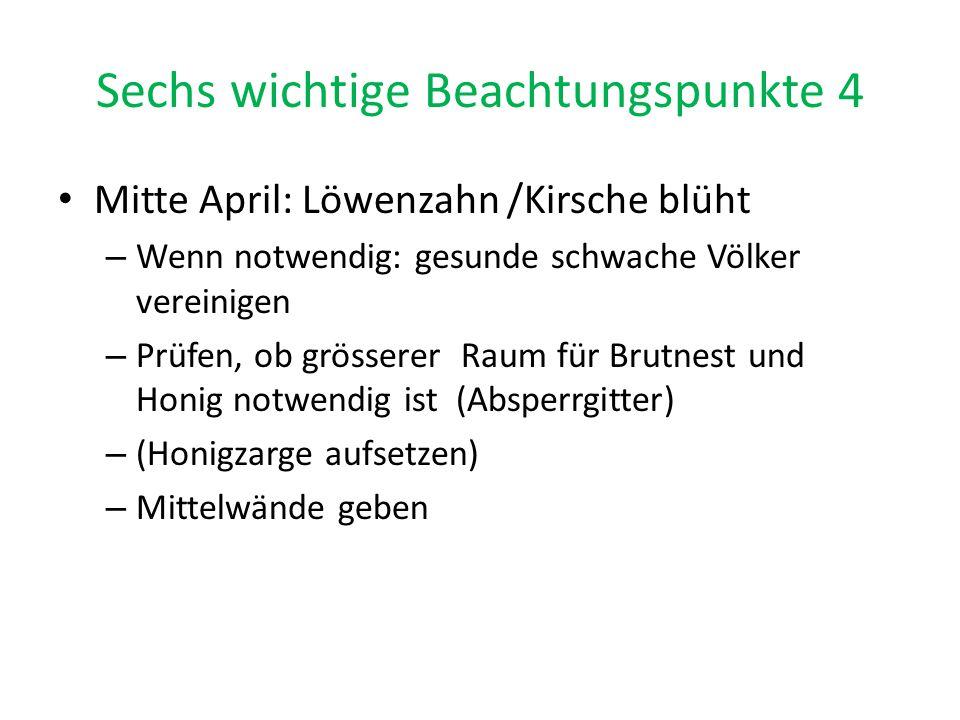 Sechs wichtige Beachtungspunkte 4 Mitte April: Löwenzahn /Kirsche blüht – Wenn notwendig: gesunde schwache Völker vereinigen – Prüfen, ob grösserer Ra
