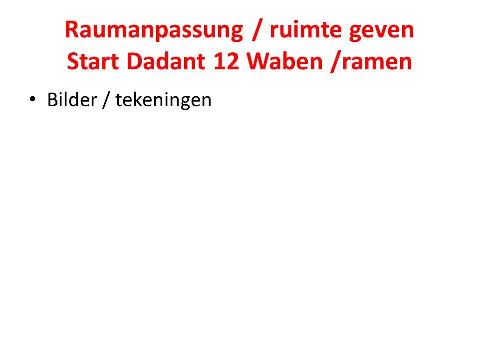 Raumanpassung / ruimte geven Start Dadant 12 Waben /ramen Bilder / tekeningen