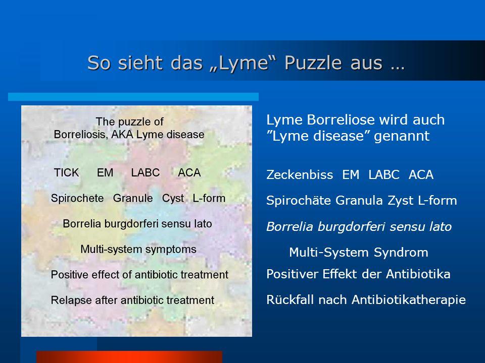 "So sieht das ""Lyme Puzzle aus … Lyme Borreliose wird auch Lyme disease genannt Zeckenbiss EM LABC ACA Spirochäte Granula Zyst L-form Borrelia burgdorferi sensu lato Multi-System Syndrom Positiver Effekt der Antibiotika Rückfall nach Antibiotikatherapie"