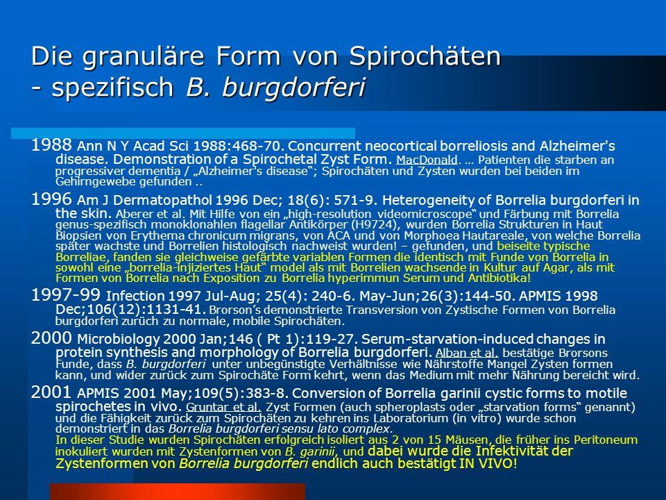 Die granuläre Form von Spirochäten - spezifisch B. burgdorferi 1988 Ann N Y Acad Sci 1988:468-70. Concurrent neocortical borreliosis and Alzheimer's d