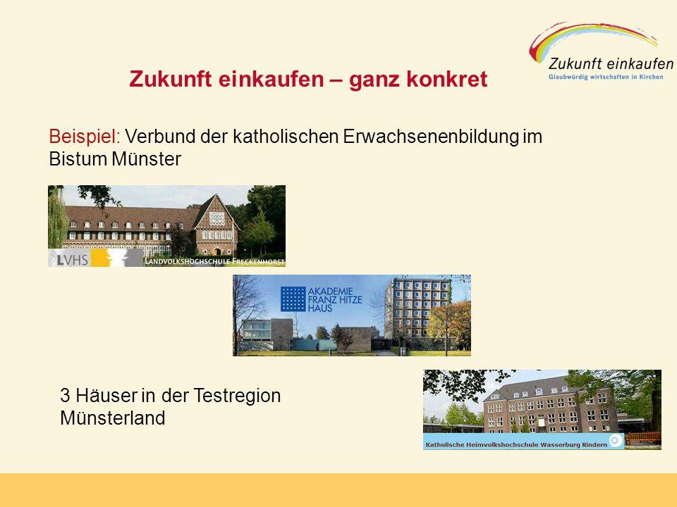 Copyright: EKvW 2008 Zukunft einkaufen – ganz konkret Beispiel: Verbund der katholischen Erwachsenenbildung im Bistum Münster 3 Häuser in der Testregion Münsterland
