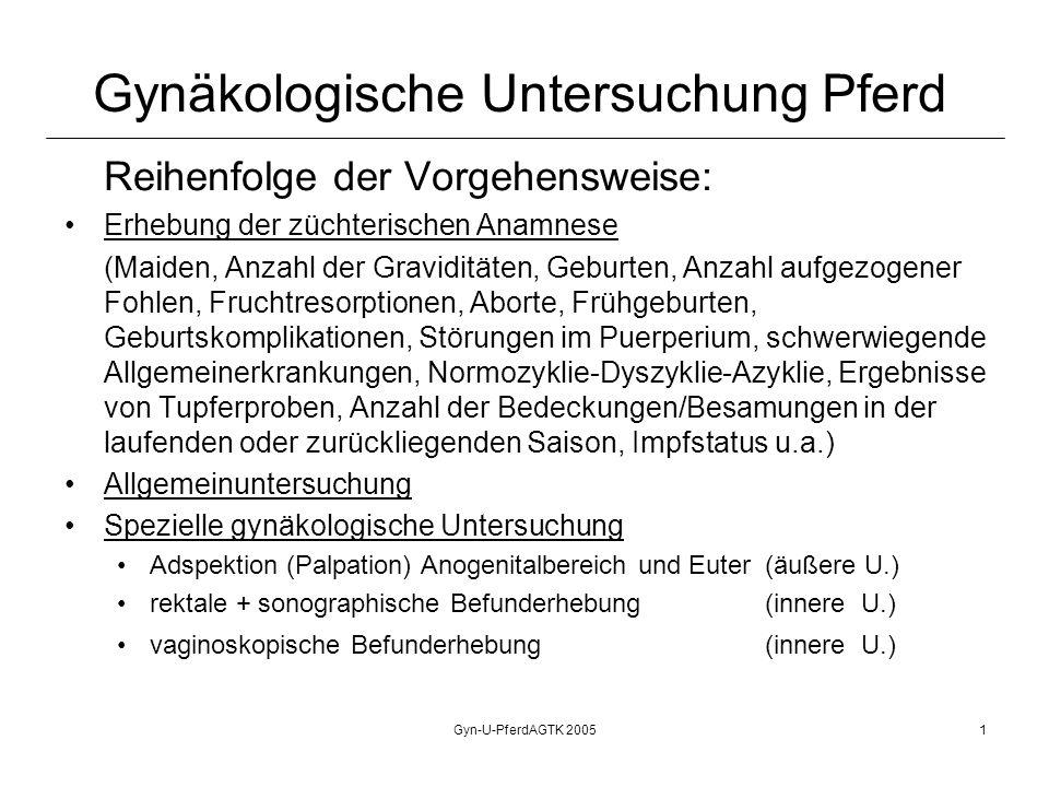 Gyn-U-PferdAGTK 20052 Gynäkologische Untersuchung Pferd Rektale Untersuchung: (Zervix: Länge, Kaliber) Uterus: topografische Lage Größe Symmetrie der cornua uteri Tonus Inhalt Ovarien Lage, Größe, Form, Funktionskörper (Adnexen) Aortenaufzweigung, knöchernes Becken, Bauchhöhlenorgane