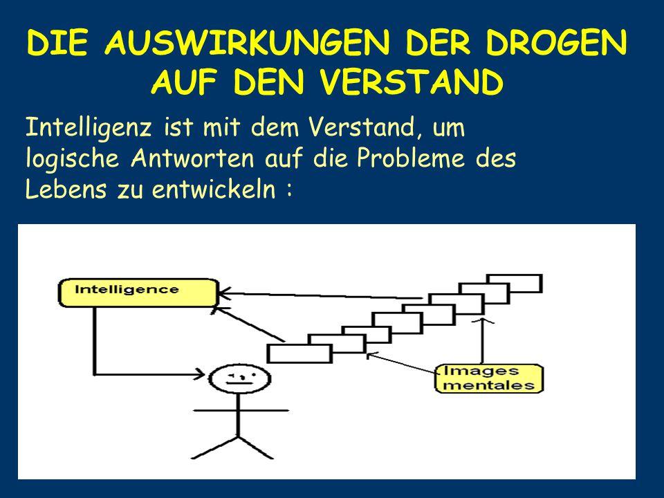 DIE AUSWIRKUNGEN DER DROGEN AUF DEN VERSTAND Intelligenz ist mit dem Verstand, um logische Antworten auf die Probleme des Lebens zu entwickeln :