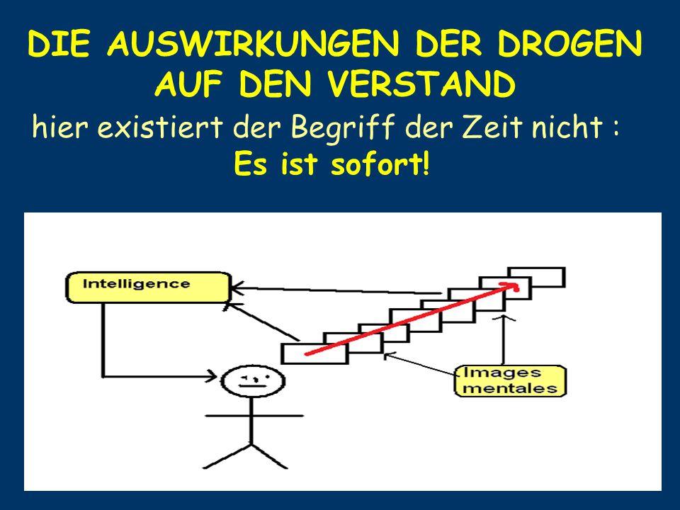 DIE AUSWIRKUNGEN DER DROGEN AUF DEN VERSTAND hier existiert der Begriff der Zeit nicht : Es ist sofort!