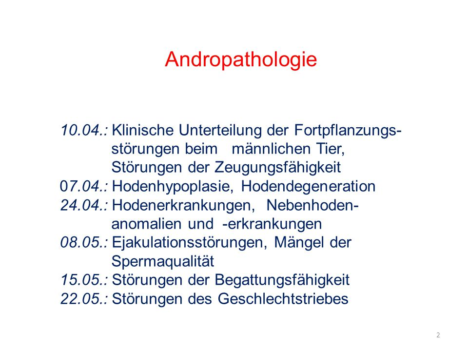 10.04.: Klinische Unterteilung der Fortpflanzungs- störungen beim männlichen Tier, Störungen der Zeugungsfähigkeit 07.04.: Hodenhypoplasie, Hodendegeneration 24.04.: Hodenerkrankungen, Nebenhoden- anomalien und -erkrankungen 08.05.: Ejakulationsstörungen, Mängel der Spermaqualität 15.05.: Störungen der Begattungsfähigkeit 22.05.: Störungen des Geschlechtstriebes Andropathologie 2