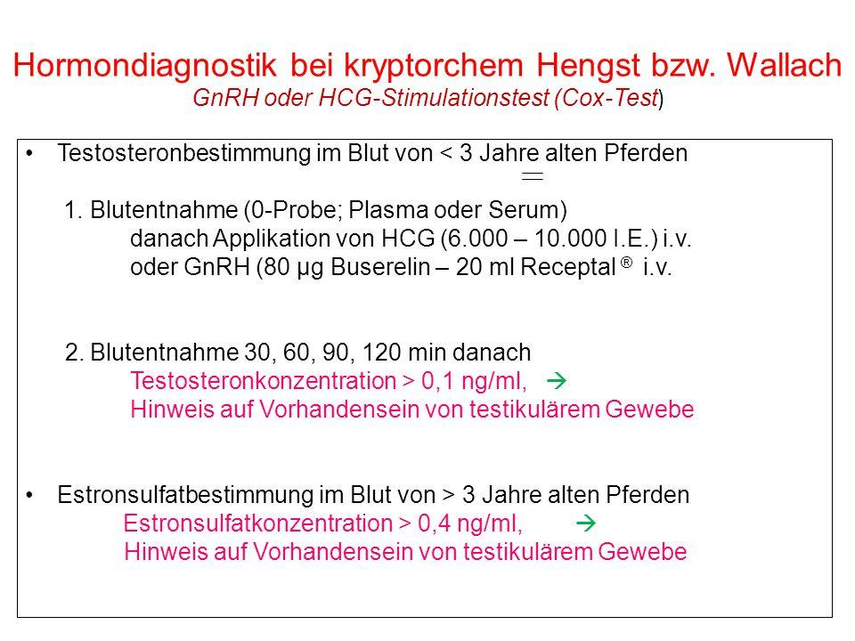 313033 Hormondiagnostik bei kryptorchem Hengst bzw. Wallach GnRH oder HCG-Stimulationstest (Cox-Test ) Testosteronbestimmung im Blut von < 3 Jahre alt