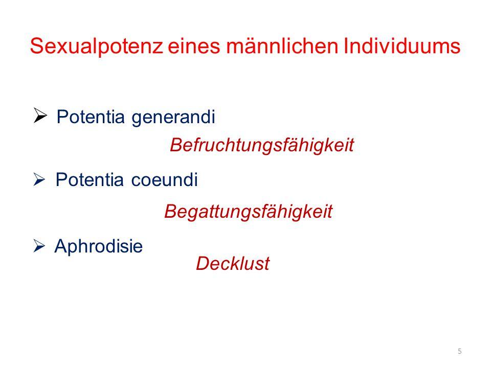Sexualpotenz eines männlichen Individuums  Potentia generandi Befruchtungsfähigkeit  Potentia coeundi Begattungsfähigkeit  Aphrodisie Decklust 5