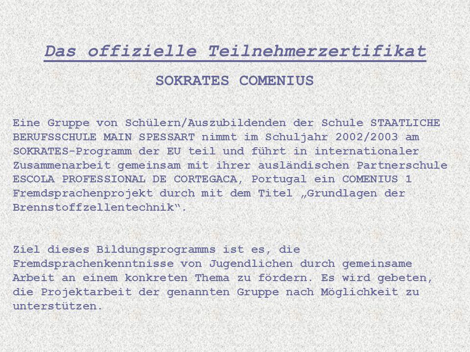 Das offizielle Teilnehmerzertifikat SOKRATES COMENIUS Eine Gruppe von Schülern/Auszubildenden der Schule STAATLICHE BERUFSSCHULE MAIN SPESSART nimmt i