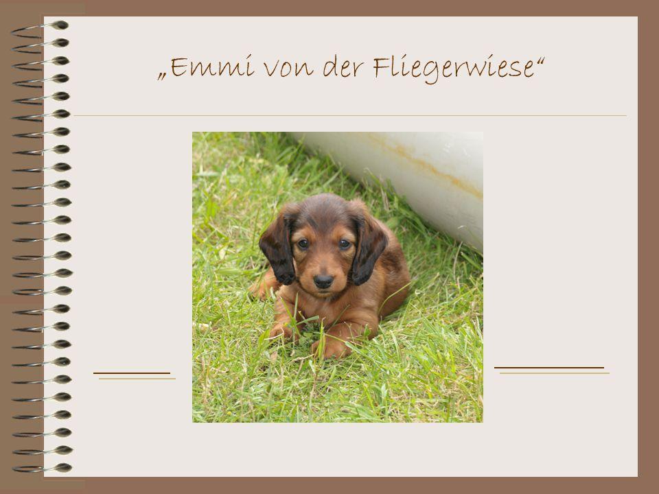 """""""Emmi von der Fliegerwiese"""