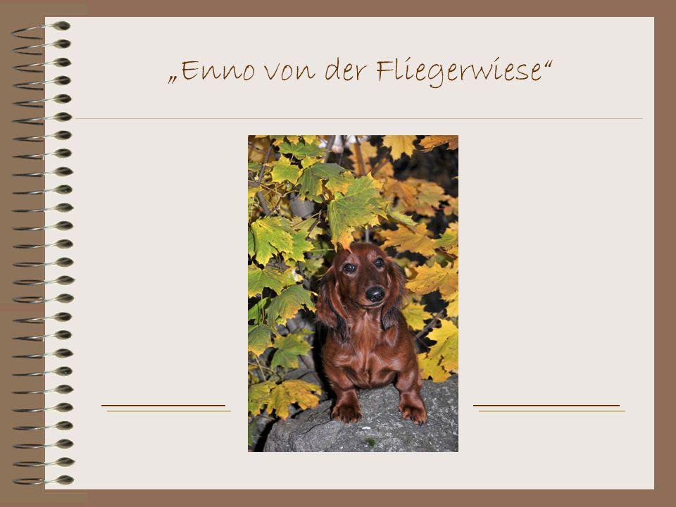 """""""Enno von der Fliegerwiese"""