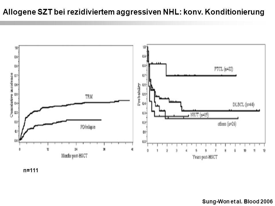 Allogene SZT bei rezidiviertem aggressiven NHL: konv. Konditionierung Sung-Won et al. Blood 2006 n=111