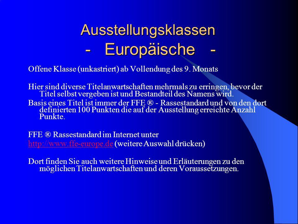 Ausstellungsklassen - Europäische - Ausstellungsklassen - Europäische - Offene Klasse (unkastriert) ab Vollendung des 9.