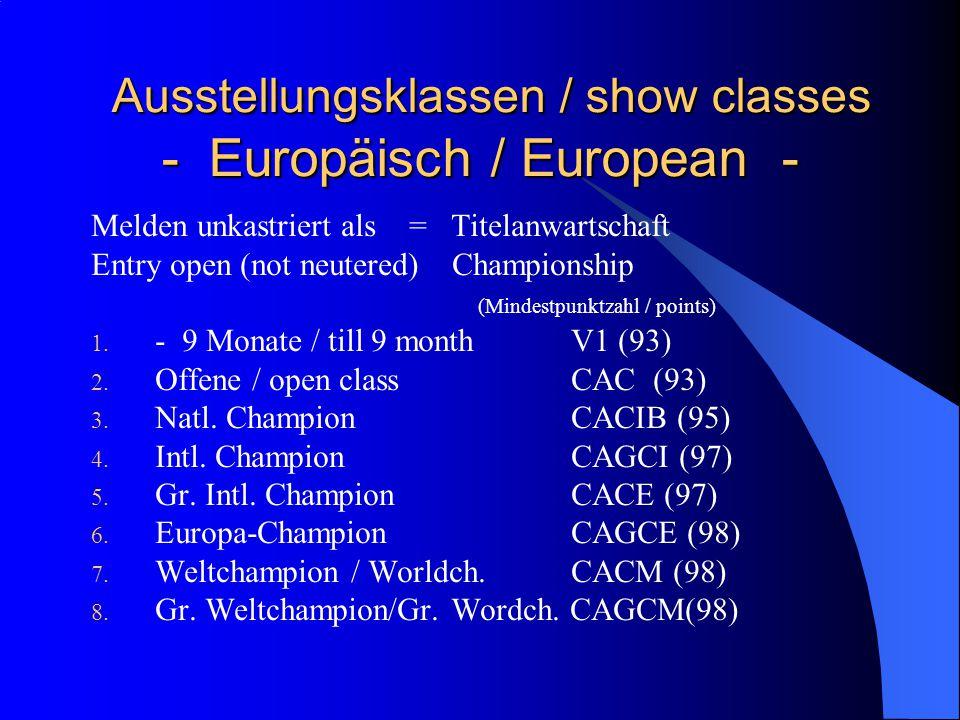 Ausstellungsklassen / show classes - Europäisch / European - Ausstellungsklassen / show classes - Europäisch / European - Melden unkastriert als = Titelanwartschaft Entry open (not neutered) Championship (Mindestpunktzahl / points) 1.