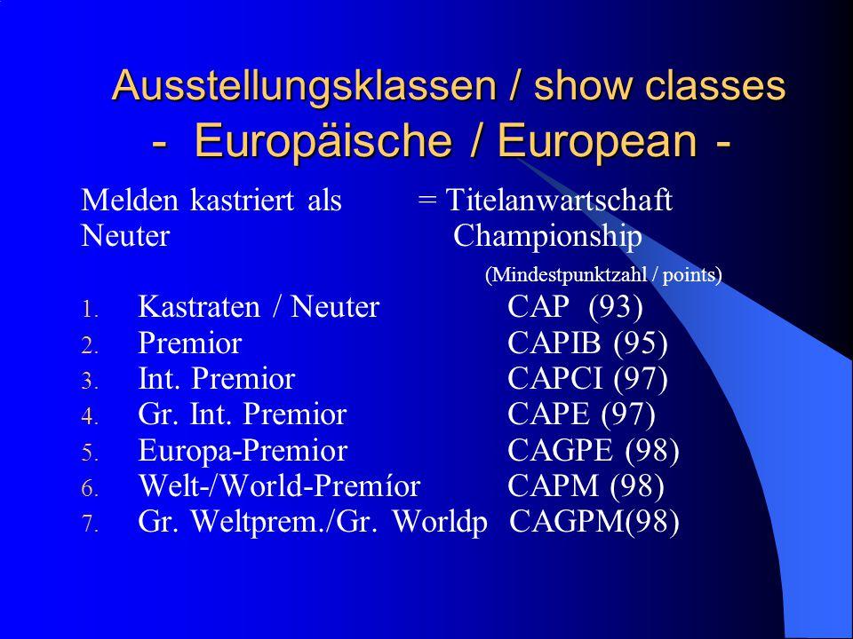 Ausstellungsklassen / show classes - Europäische / European - Ausstellungsklassen / show classes - Europäische / European - Melden kastriert als = Titelanwartschaft Neuter Championship (Mindestpunktzahl / points) 1.