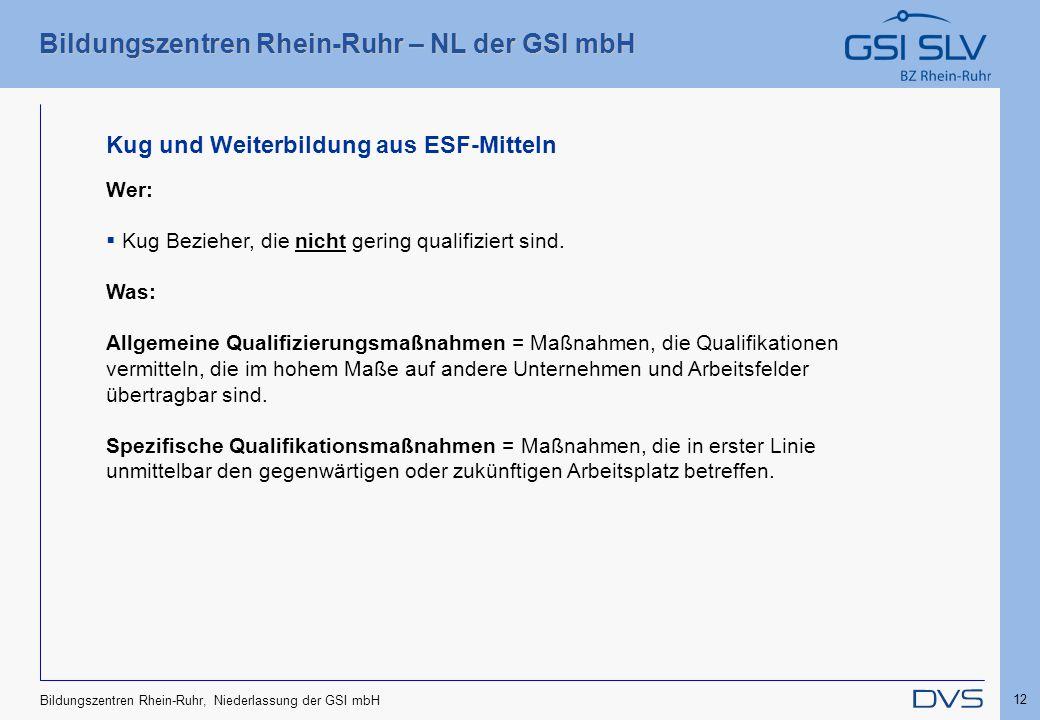 Bildungszentren Rhein-Ruhr – NL der GSI mbH 12 Bildungszentren Rhein-Ruhr, Niederlassung der GSI mbH Kug und Weiterbildung aus ESF-Mitteln Wer:  Kug
