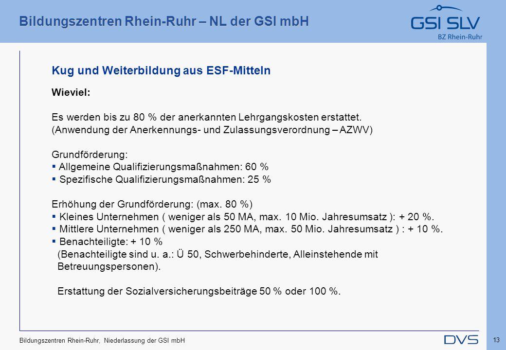 Bildungszentren Rhein-Ruhr – NL der GSI mbH 13 Bildungszentren Rhein-Ruhr, Niederlassung der GSI mbH Kug und Weiterbildung aus ESF-Mitteln Wieviel: Es