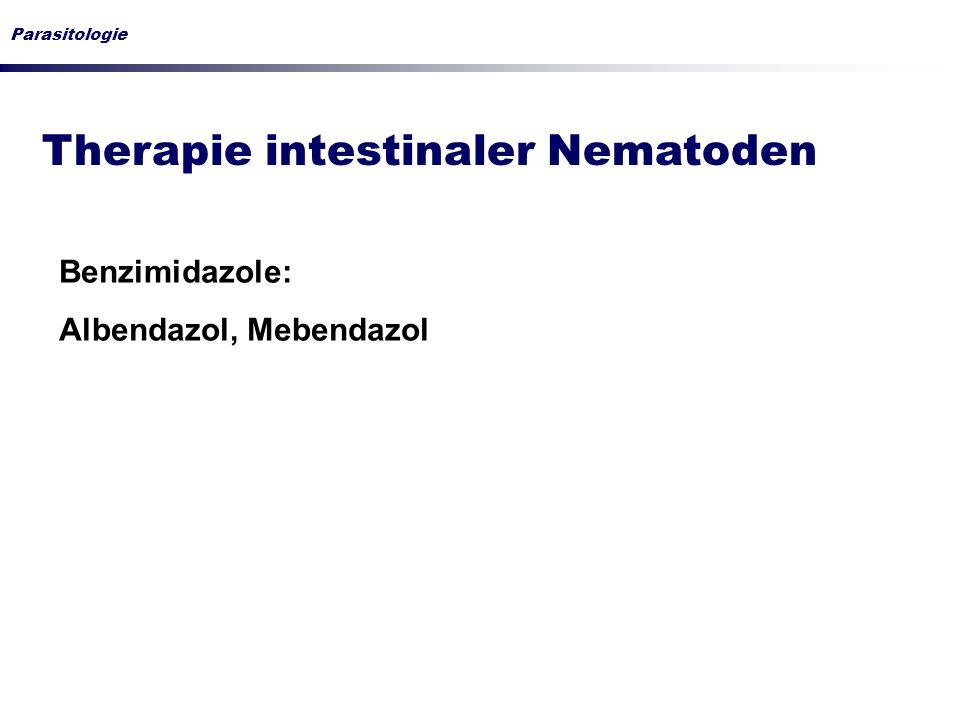 Parasitologie Therapie intestinaler Nematoden Benzimidazole: Albendazol, Mebendazol