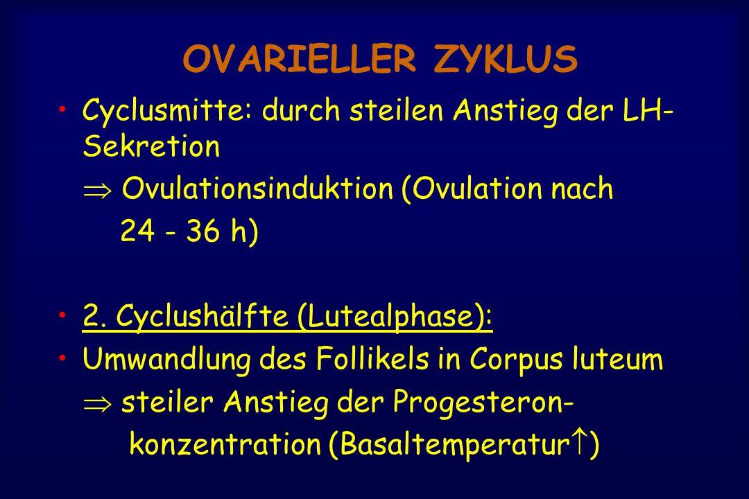 OVARIELLER ZYKLUS Cyclusmitte: durch steilen Anstieg der LH- Sekretion  Ovulationsinduktion (Ovulation nach 24 - 36 h) 2. Cyclushälfte (Lutealphase):