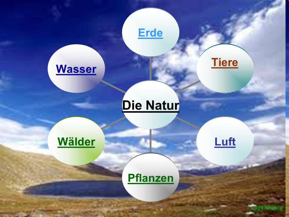 Die Natur Erde Tiere LuftPflanzenWälderWasser