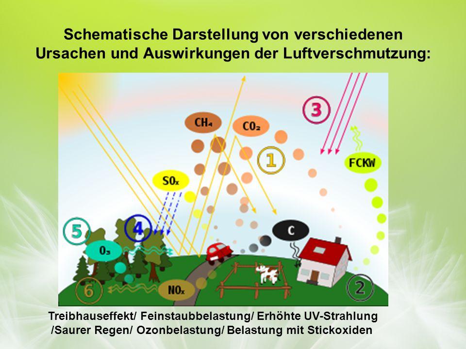 Schematische Darstellung von verschiedenen Ursachen und Auswirkungen der Luftverschmutzung: Treibhauseffekt/ Feinstaubbelastung/ Erhöhte UV-Strahlung /Saurer Regen/ Ozonbelastung/ Belastung mit Stickoxiden
