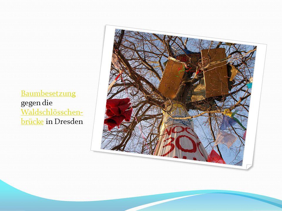 BaumbesetzungBaumbesetzung gegen die Waldschlösschen- brücke in Dresden Waldschlösschen- brücke