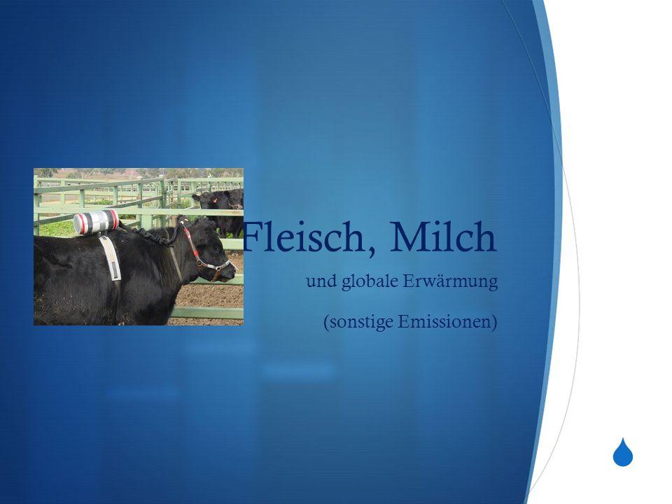  Fleisch, Milch und globale Erwärmung (sonstige Emissionen)