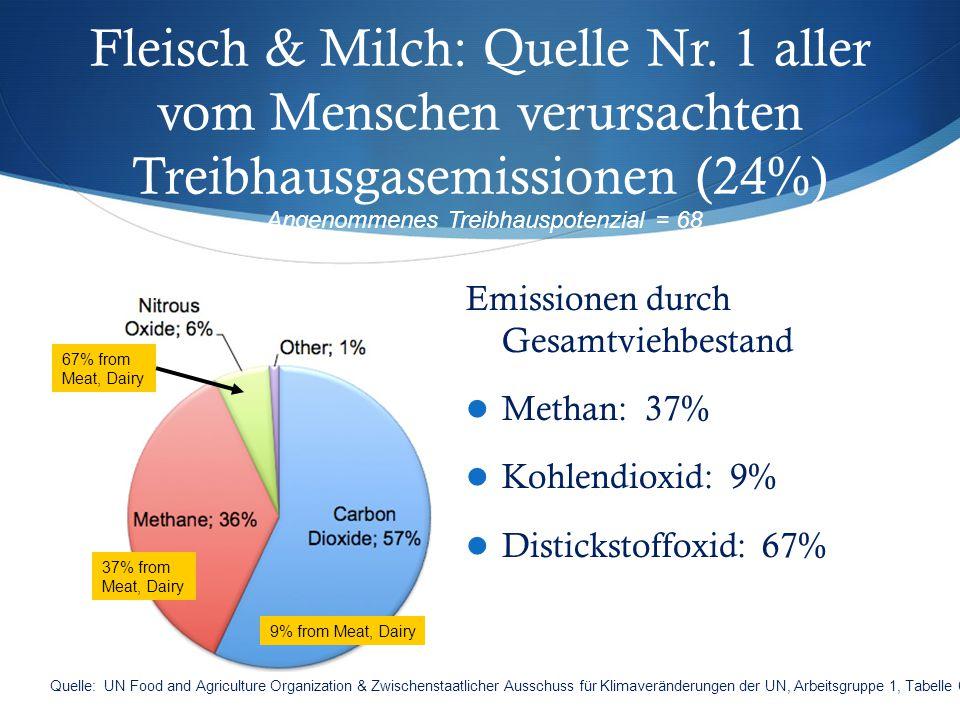 Fleisch & Milch: Quelle Nr. 1 aller vom Menschen verursachten Treibhausgasemissionen (24%) Emissionen durch Gesamtviehbestand Methan: 37% Kohlendioxid