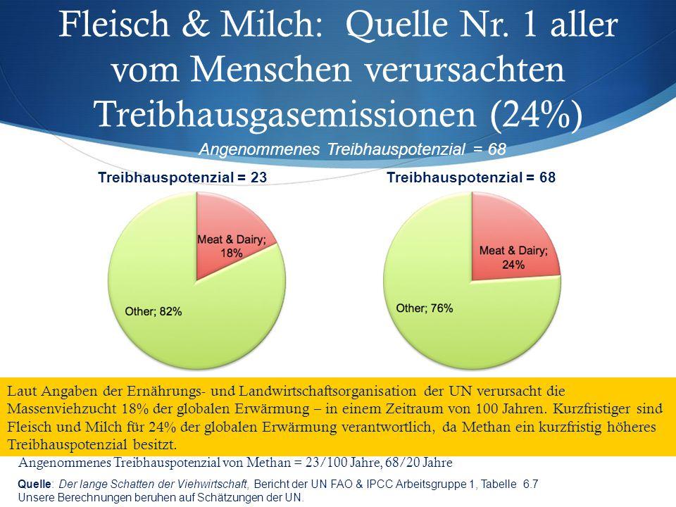 Fleisch & Milch: Quelle Nr. 1 aller vom Menschen verursachten Treibhausgasemissionen (24%) Quelle: Der lange Schatten der Viehwirtschaft, Bericht der