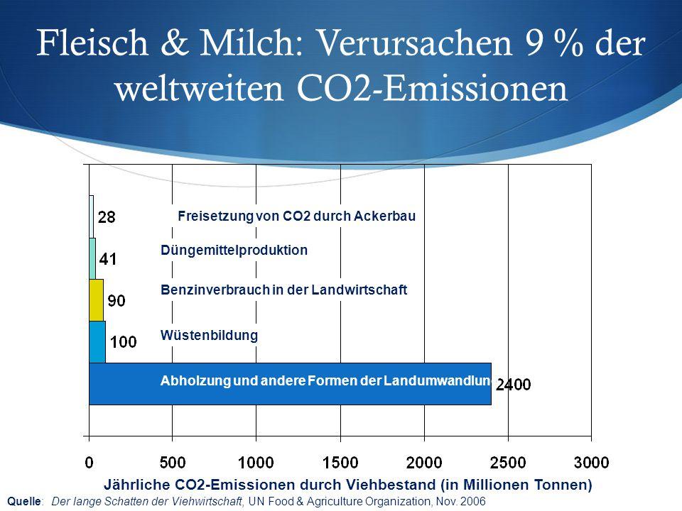 Fleisch & Milch: Verursachen 9 % der weltweiten CO2-Emissionen Abholzung und andere Formen der Landumwandlung Wüstenbildung Benzinverbrauch in der Lan