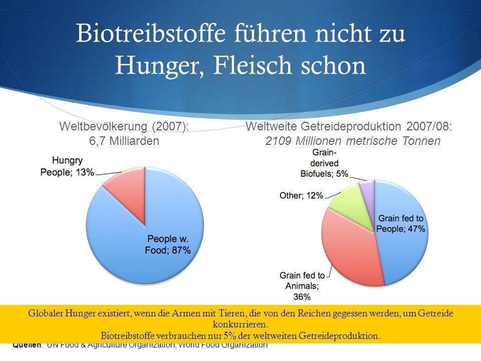 Biotreibstoffe führen nicht zu Hunger, Fleisch schon Quellen: UN Food & Agriculture Organization, World Food Organization Weltweite Getreideproduktion