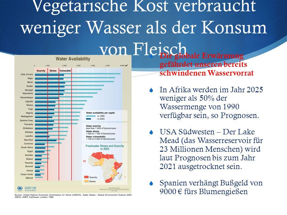 Vegetarische Kost verbraucht weniger Wasser als der Konsum von Fleisch  Die globale Erwärmung gefährdet unseren bereits schwindenen Wasservorrat  In Afrika werden im Jahr 2025 weniger als 50% der Wassermenge von 1990 verfügbar sein, so Prognosen.