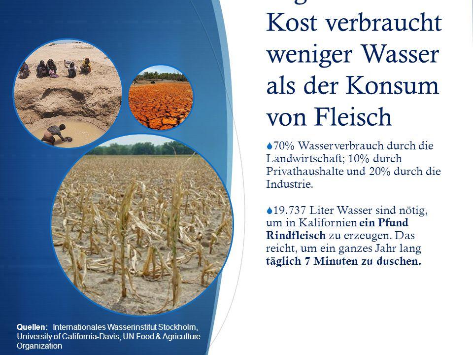 Vegetarische Kost verbraucht weniger Wasser als der Konsum von Fleisch  70% Wasserverbrauch durch die Landwirtschaft; 10% durch Privathaushalte und 20% durch die Industrie.