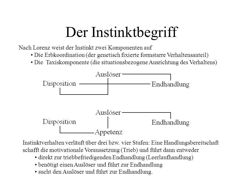 Der Instinktbegriff Nach Lorenz weist der Instinkt zwei Komponenten auf Die Erbkoordination (der genetisch fixierte formstarre Verhaltensanteil) Die T