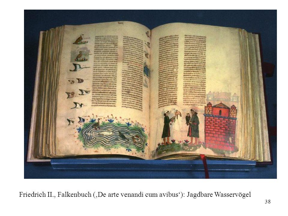 38 Friedrich II., Falkenbuch ('De arte venandi cum avibus'): Jagdbare Wasservögel