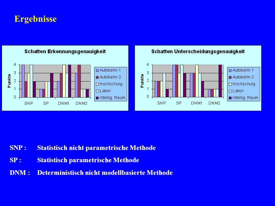 Ergebnisse SNP :Statistisch nicht parametrische Methode SP :Statistisch parametrische Methode DNM :Deterministisch nicht modellbasierte Methode