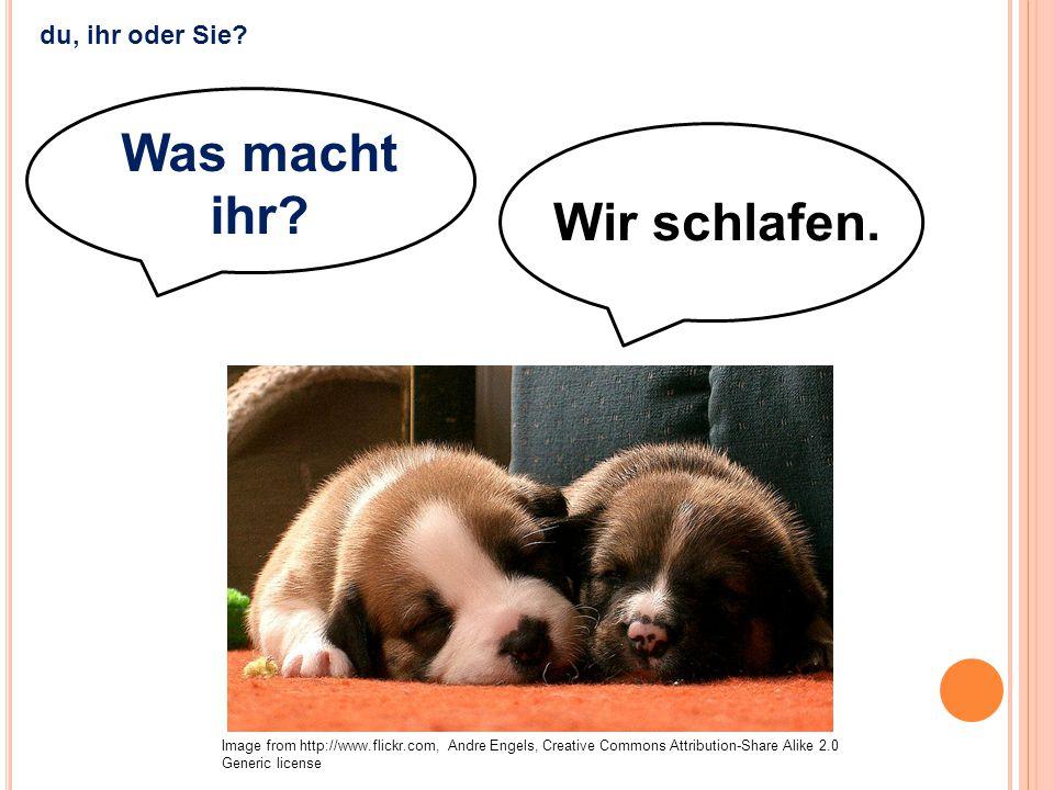 Wir schlafen. Was macht ihr? Image from http://www.flickr.com, Andre Engels, Creative Commons Attribution-Share Alike 2.0 Generic license du, ihr oder