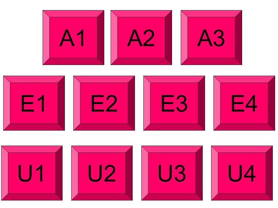A1A2A3 E1E2E3E4 U1U2U3U4