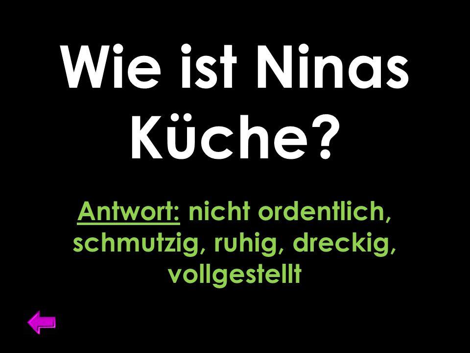 Wie ist Ninas Küche Antwort: nicht ordentlich, schmutzig, ruhig, dreckig, vollgestellt