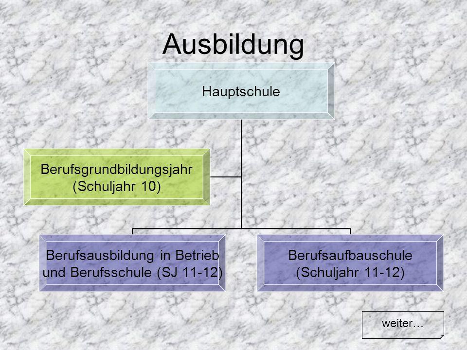 Ausbildung Hauptschule Berufsausbildung in Betrieb und Berufsschule (SJ 11- 12) Berufsaufbauschule (Schuljahr 11-12) Berufsgrundbildungsjahr (Schuljah