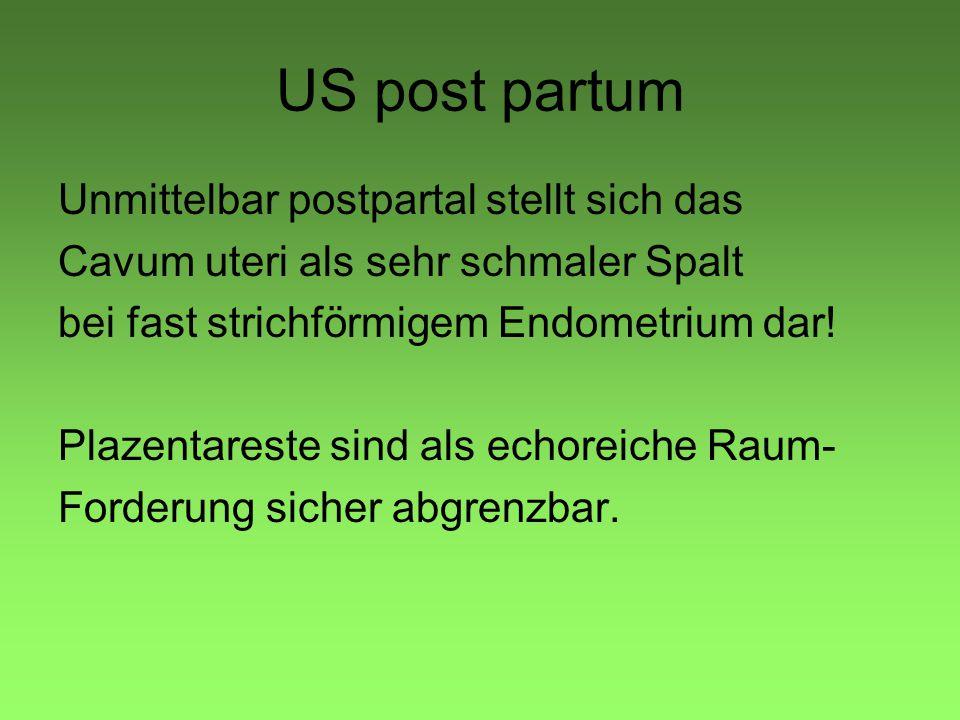 US post partum Unmittelbar postpartal stellt sich das Cavum uteri als sehr schmaler Spalt bei fast strichförmigem Endometrium dar! Plazentareste sind