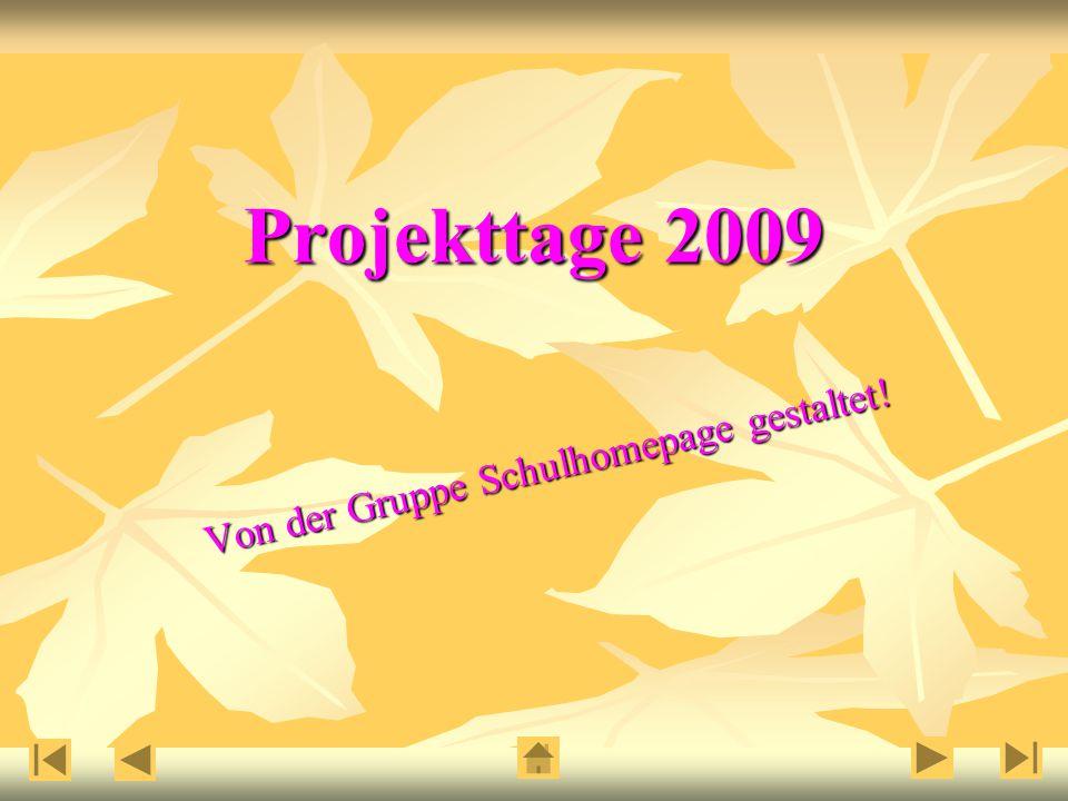 Projekttage 2009 Von der Gruppe Schulhomepage gestaltet!
