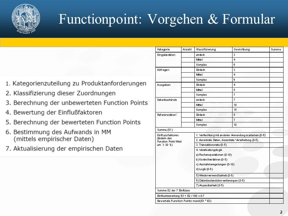 2 Functionpoint: Vorgehen & Formular
