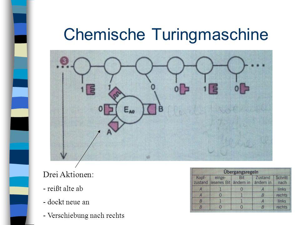 Chemische Turingmaschine Drei Aktionen: - reißt alte ab - dockt neue an - Verschiebung nach rechts