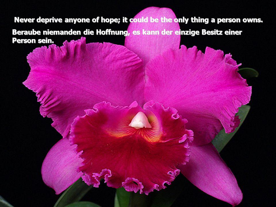 N NN Never deprive anyone of hope; it could be the only thing a person owns. Beraube niemanden die Hoffnung, es kann der einzige Besitz einer Person s